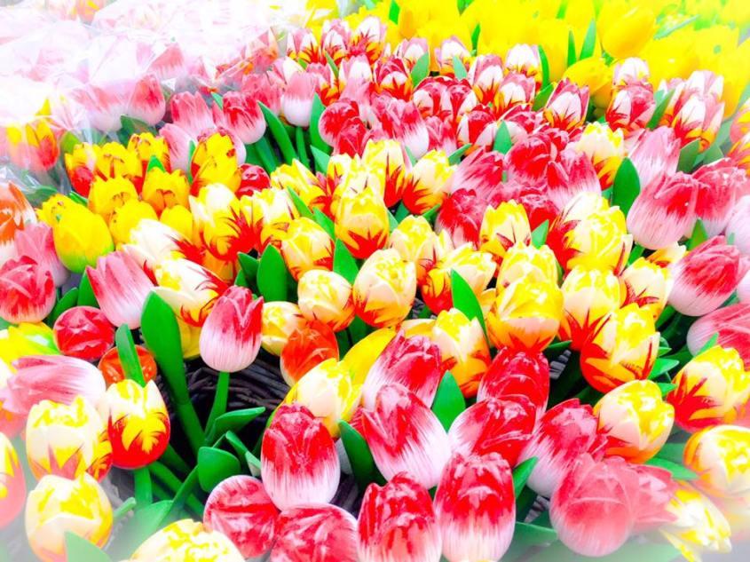 flower-market-amsterdam-flowers