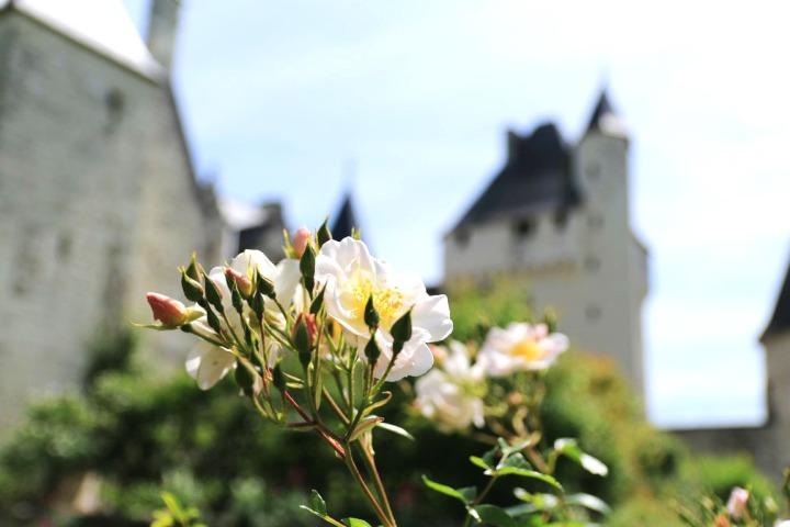Une journée de rêve au Château duRivau